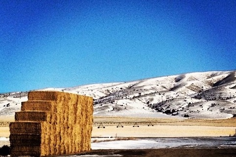 A stack of large hay next to a snow-covered field with irrigation with mountains in the background beneath a blue sky