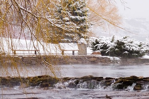 Snow-covered tree branches obscure a view of snow-covered park benches next to a steaming pond with rock walls